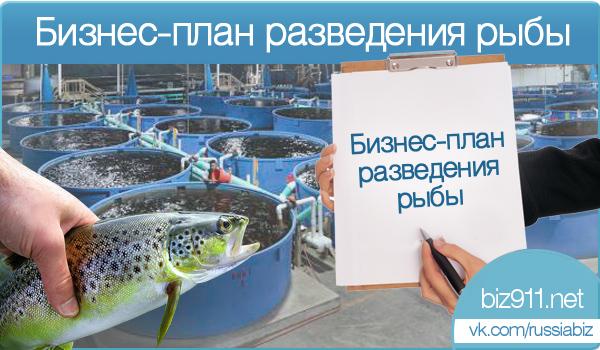 Бизнес план рыбной фермы  planagroru